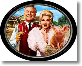Green Acres- TV sit-com
